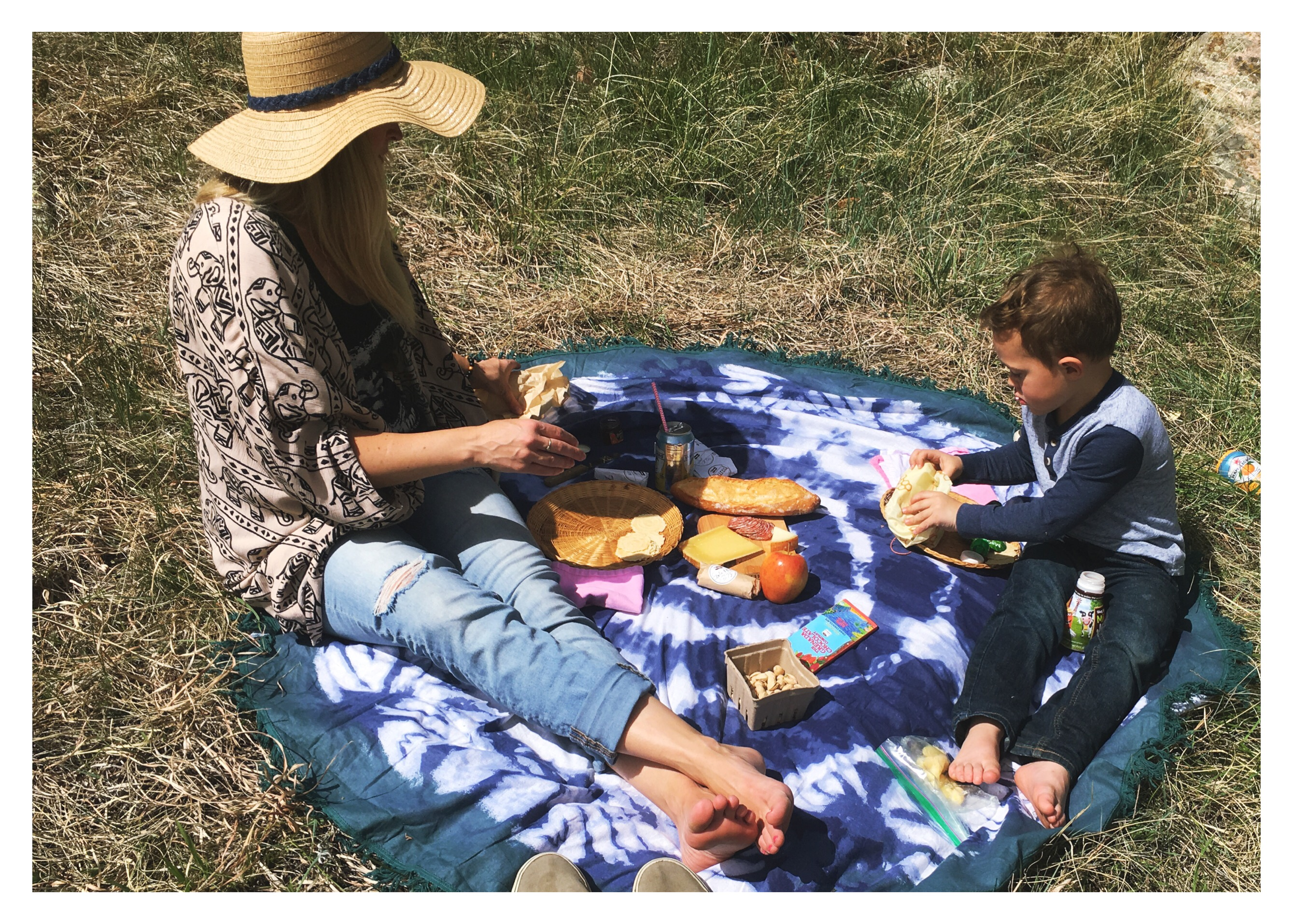 colorado picnic